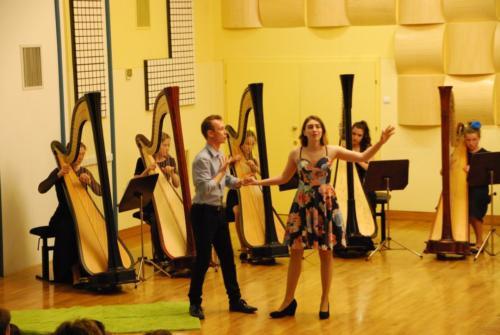 Koncert orkestra harf 7. 5. 2018